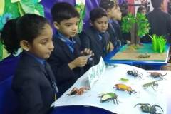 Science Exhibition
